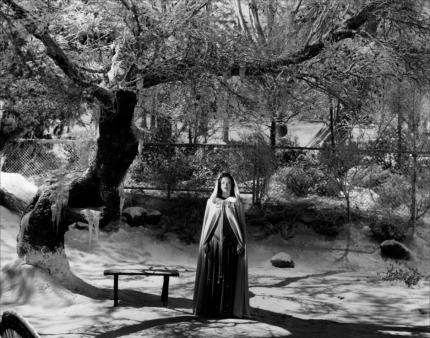 Simone Simon dans La malédiction des hommes-chats de Robert Wise © RKO