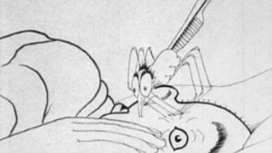 <em>How a mosquito operates</em> de Winsor McCay © Vitagraph Company of America