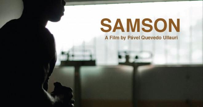 Samson © F3C/DR