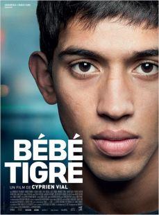 Bebe Tigre_Affiche