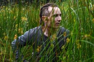 The survivalist © K5 International