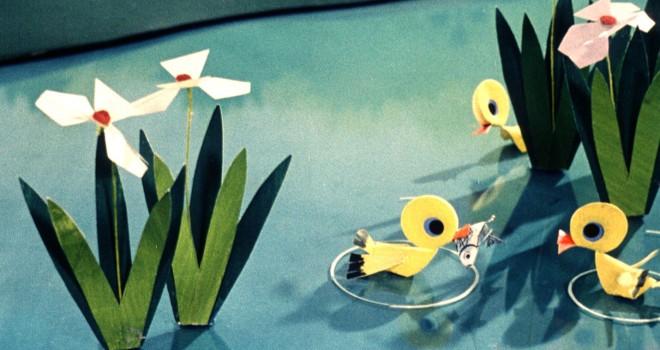 Les petits canards intelligents © F3C/DR